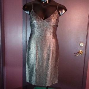 Beautiful Dress ( New )